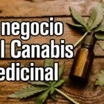 El Negocio del Canabis medicinal en el Perú